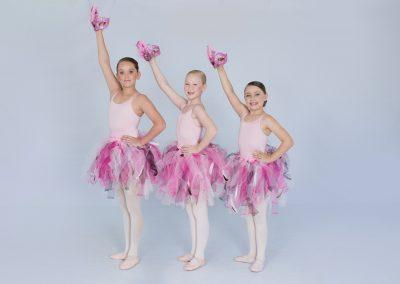 4_Flamingo-min